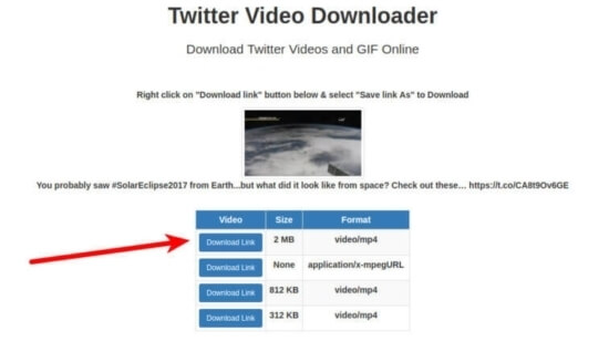 Download Button of Twitter video